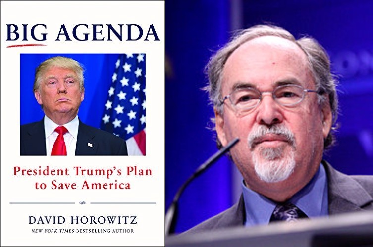 David Horowitz Big Agenda